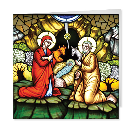 Nativity Window Drohovych Seminary