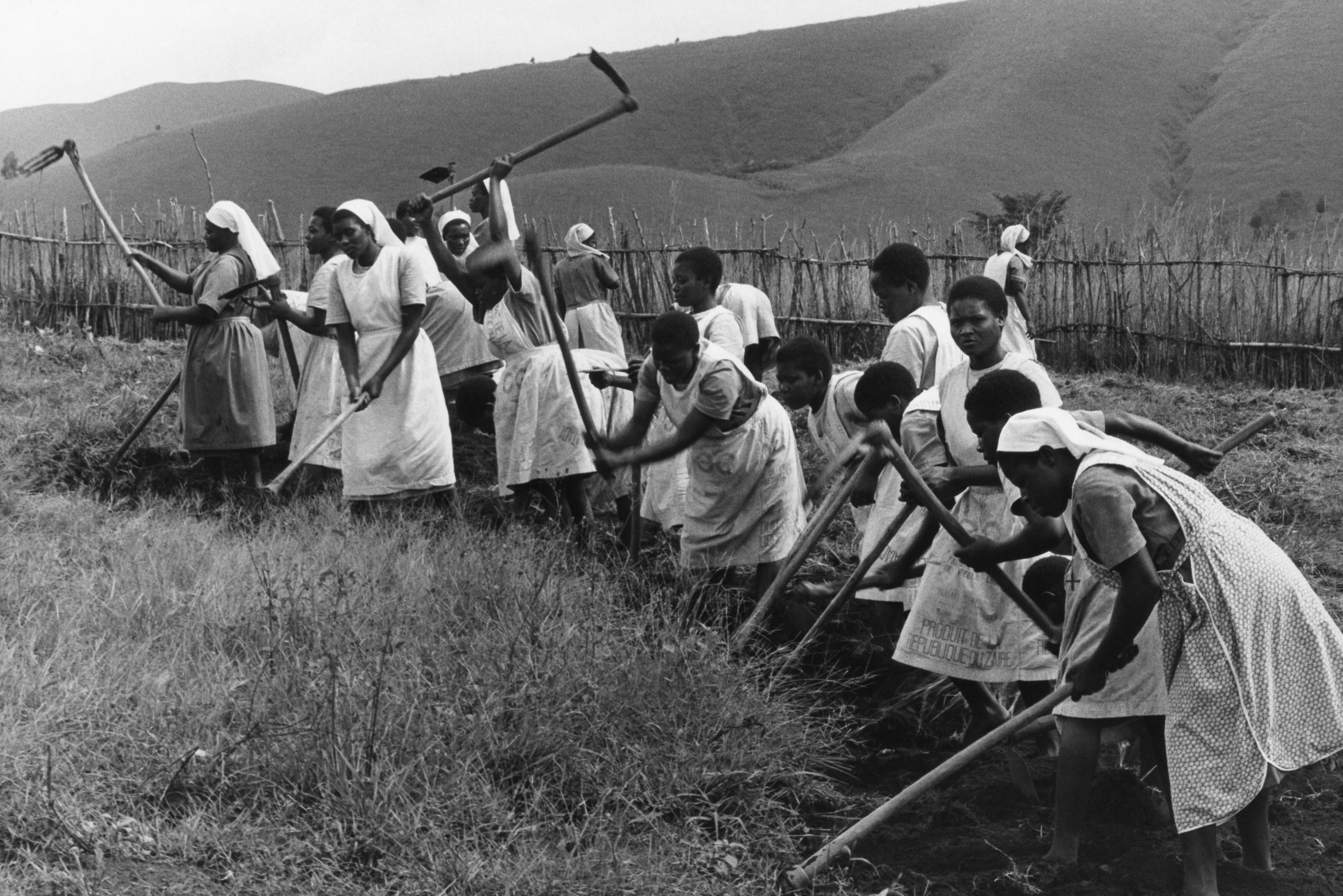 With archive image of Sisters and novices from the Daughters of the Resurrection working in the fields (Image © ACN/Karl Gähwyler)